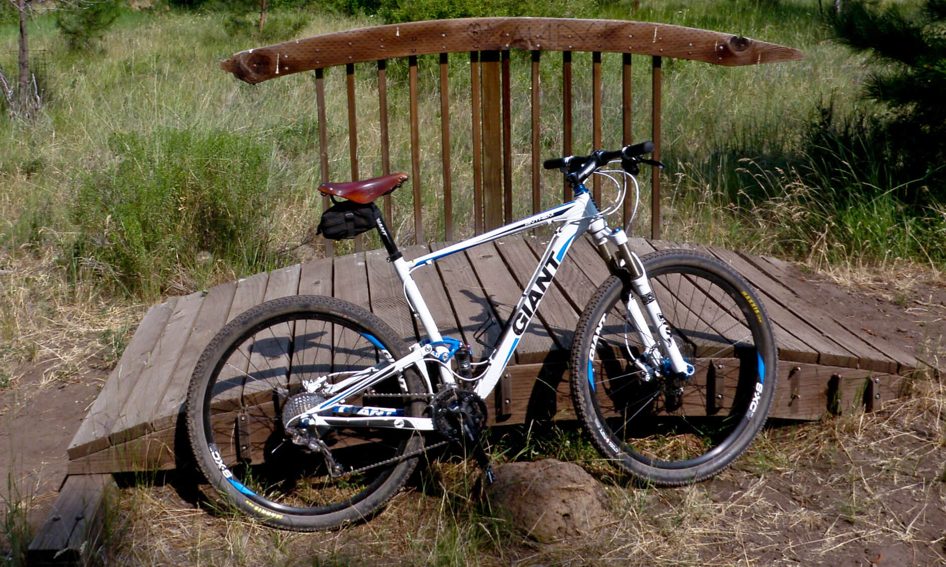ledersattel f rs mountainbike die besten. Black Bedroom Furniture Sets. Home Design Ideas